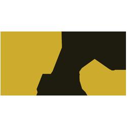 max-arms.com